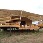 The Oribi Tent