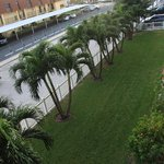 The view of the grounds and parking from our balcony #305
