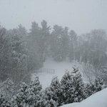 Snow!!!!!!!!!!
