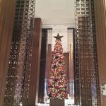 Lobby (with seasonal Christmas tree)