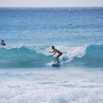 Burkie's Surf School