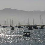 nearby bay
