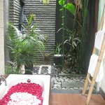 Our indoor/outdoor bathroom