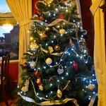 Weihnachtsbaum / Christmas tree