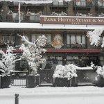 Sous la neige magnifique...