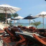 Bequeme und ausreichend viele Liegen am Strand und Pool