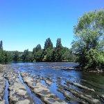 Borde río Laja desde la playita