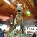 Tiranosaurus Rex,TREMENDO