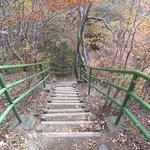 見晴台(小蓬莱)の階段