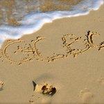 GCBC we love you!