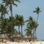 Beautiful, relaxing beach