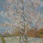 Almond blossom - Vicent Van Gogh