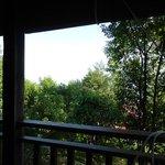 Vue depuis le balcon du bungalow ... la mer est derrière les arbres