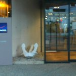 Novotel Le Havre Bassin Vauban: Francia: ingresso hotel
