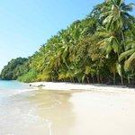 Playa cerca de Isla Coiba