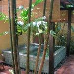 Pool outside room