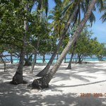 ładny teren plaży tuż przy White Shell