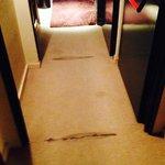 La moqueta del pasillo de la 3ª planta