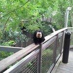 A very friendly monkey.