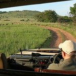 On the morning game drive with Heinrich