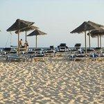 solstolar vid stranden - gratis