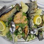 Mix fish plate