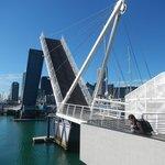 Puerto de Auckland