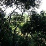 Overlooking Macal River