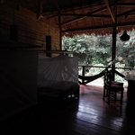Rooms with mosquito netted beds, open to the forest