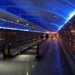 walkway to terminal