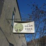 ภาพถ่ายของ The Bean Tree