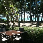 View of Palm Cove from Amphora Restaurant