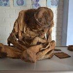 Skeleton in the museum