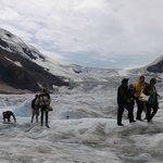 氷河を歩く