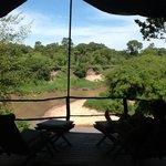 View at Mara Explorer from Tent #10