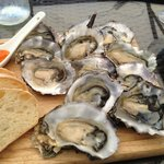 Beautiful Te Matuku oysters