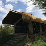 こんなテントです