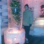 Frozen Orange Tree