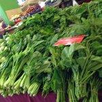 野菜やハーブ