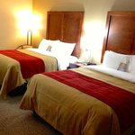 Comfort Inn Dayton Newly Renovated Truly Yours Double Queen Room