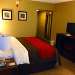 Comfort Inn Dayton Newly Renovated Truly Yours King Bed Room