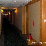 消火器がむき出しだったりして廊下は全くビジネスホテル風