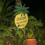 cocos beach bar