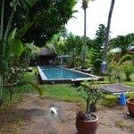 piscine, bar et restaurant au fond