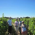 In the vineyards on a very sunny day!