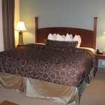 South Bend, IN Staybridge Suites -- King Bed