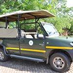 Les 4x4 pour les safaris