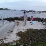 Michael, Alaynah, and Zoey enjoying a walk.