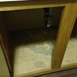 Rotten cabinets under the sink