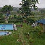 La piscine, le jardin